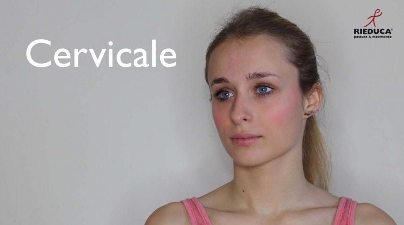 Perchè la cervicale fa male? Le cause della cervicalgia